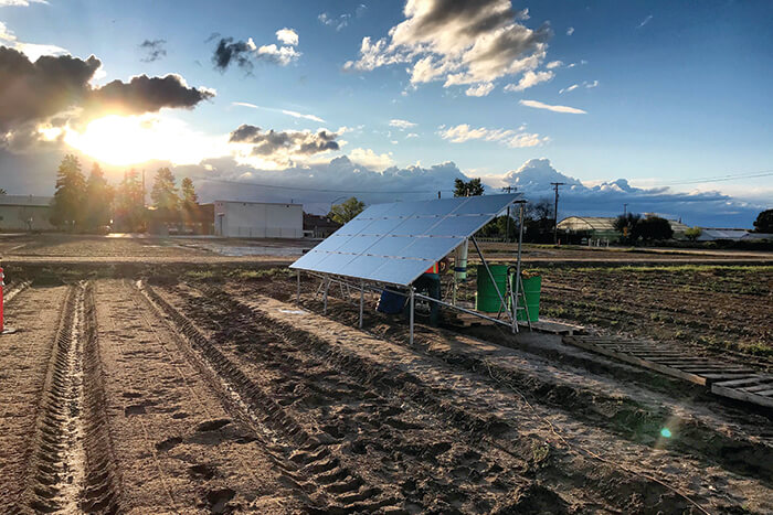 On-farm nitrogen production