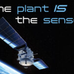 The plant IS the sensor